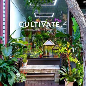 Cultivate Urban Rainforest