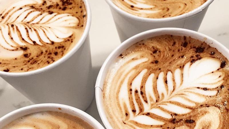 Backlot Coffee, Evanston