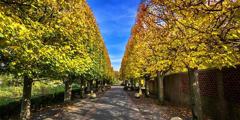 Chicago Botanic Garden, Glencoe