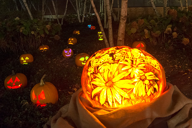 Night of 1,000 Jack-o'-Lanterns, Chicago Botanic Garden, Glencoe (Photo Credit: Chicago Botanic Garden)